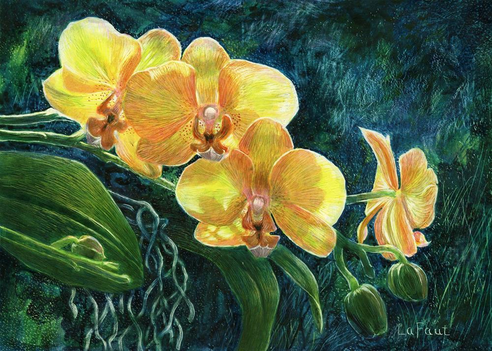"""Moth Orchids: Amazon Series #2"" original fine art by Sandra LaFaut"