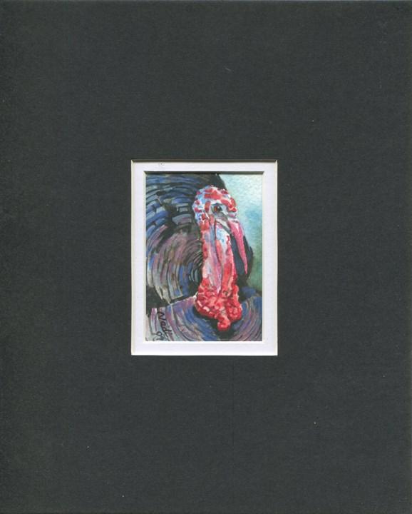 """Turkey A"" original fine art by Nadi Spencer"