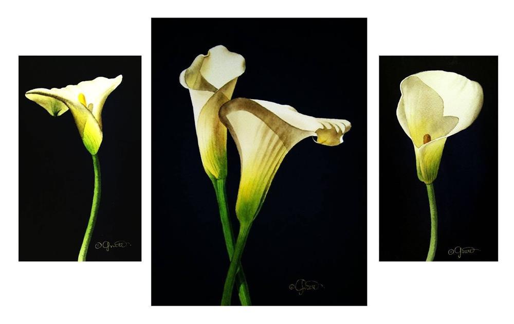 """Calla Grouping"" original fine art by Jacqueline Gnott, whs"