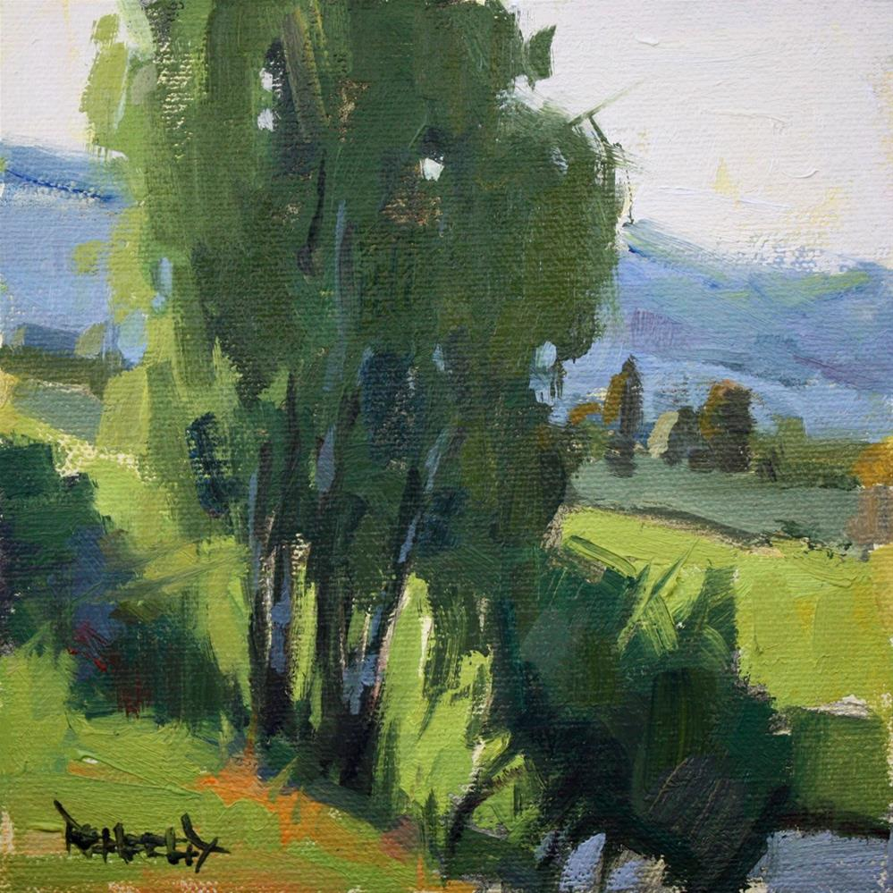 """Morning Sunlight on the Birch Trees at the Farm"" original fine art by Cathleen Rehfeld"