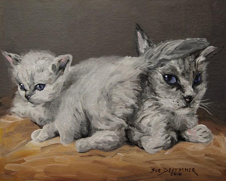 """""""Really?"""" original fine art by Sue Deutscher"""
