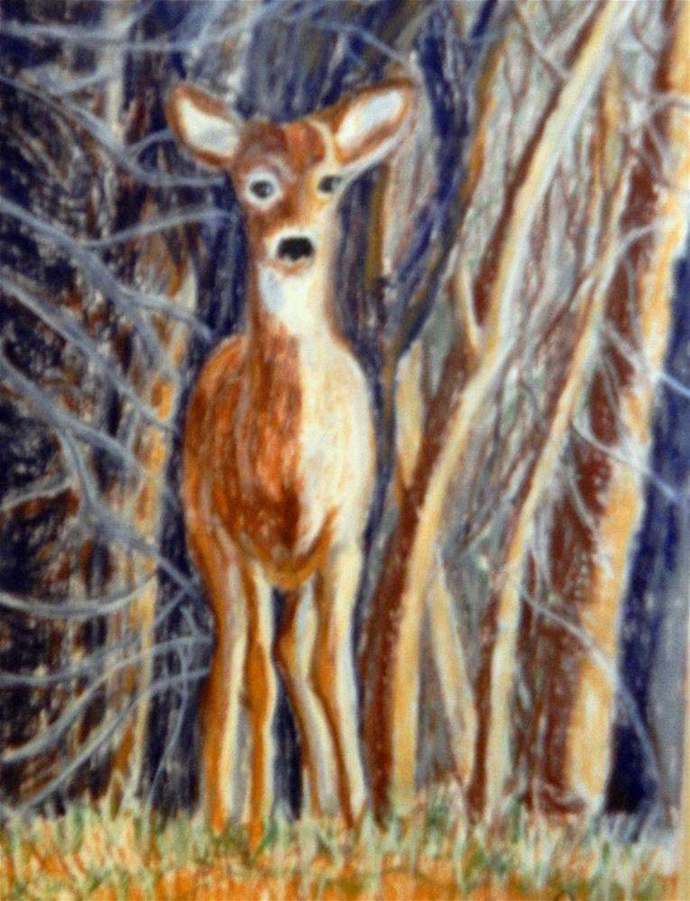 """""""Deer on the Side of the Road"""" original fine art by Elaine Shortall"""
