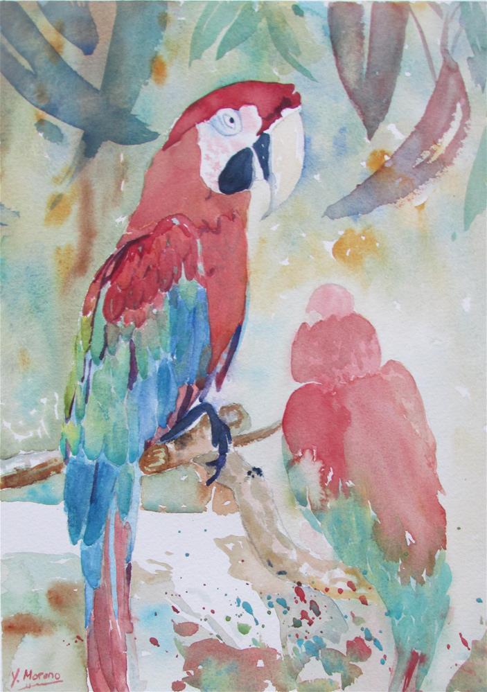 """Pretty Polly"" original fine art by Yolanda Moreno"