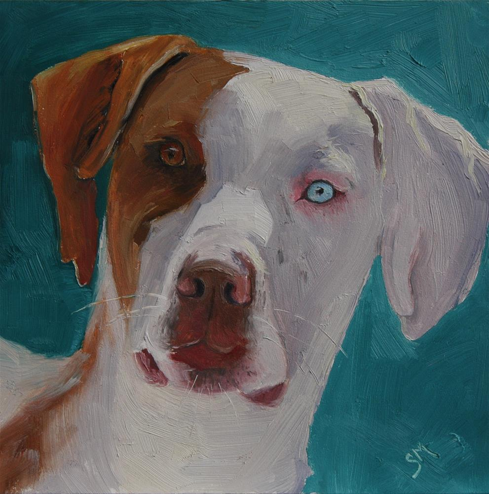 """Sheldon"" original fine art by Sheila Marie"