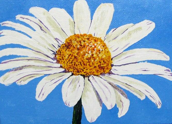 """White Daisy against Blue"" original fine art by Nan Johnson"