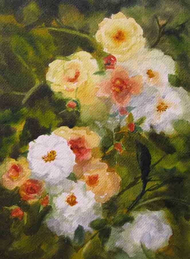 """Cascading Roses, Watercolor"" original fine art by Pat Fiorello"