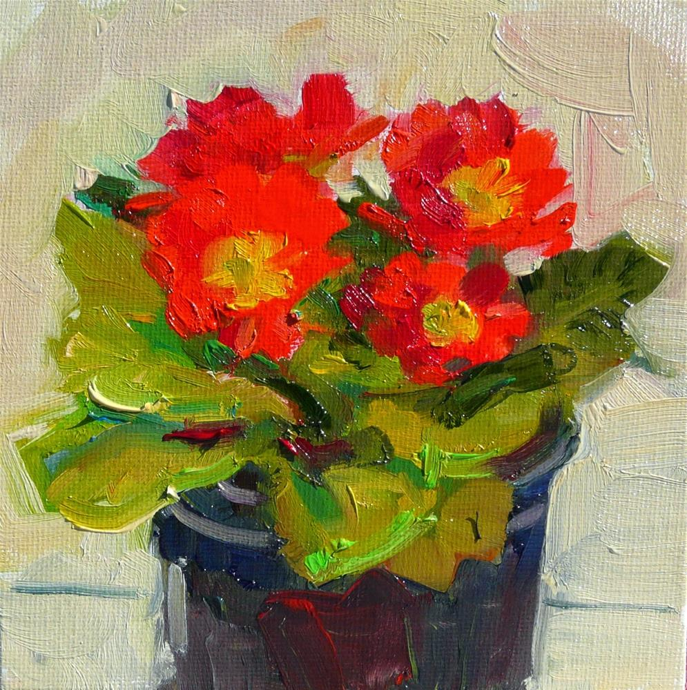 """Primrose Red,still life,oil on canvas,6x6,price$200"" original fine art by Joy Olney"