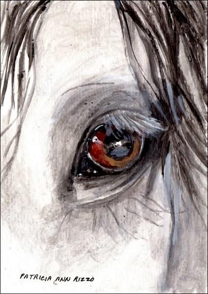 """The Stallion's Eye 2"" original fine art by Patricia Ann Rizzo"