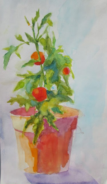 """""""Last Tomatoes Summer's end.   6x12 Watercolor of tomatoes"""" original fine art by Mary Sheehan Winn"""
