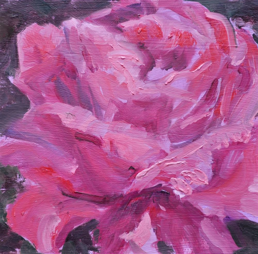 """Rosy Rose"" original fine art by Catherine Crookston"