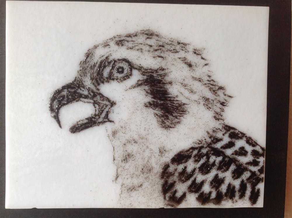 """Osprey Detail"" original fine art by Calloway Meiners"