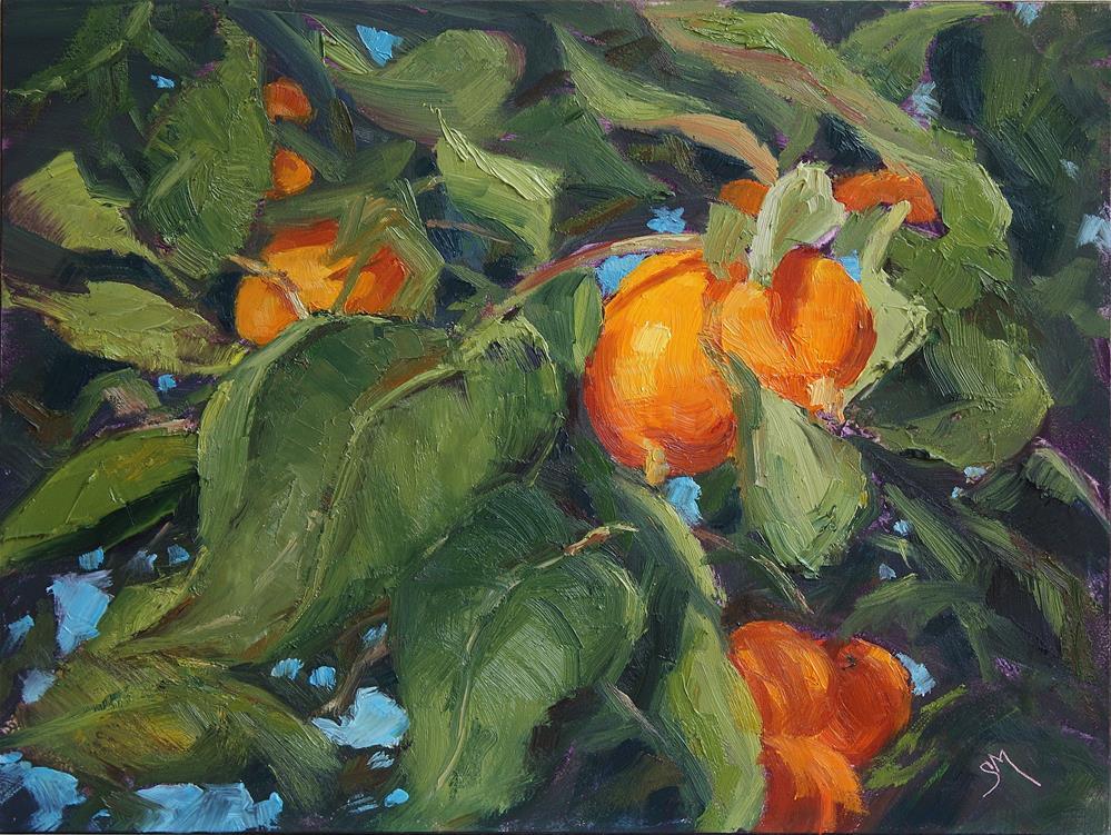"""Brilliant Citrus"" original fine art by Sheila Marie"