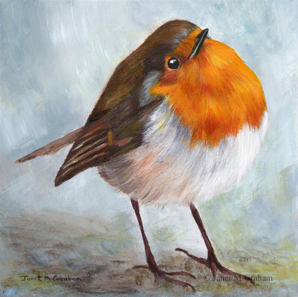 """Robin No 9"" original fine art by Janet Graham"