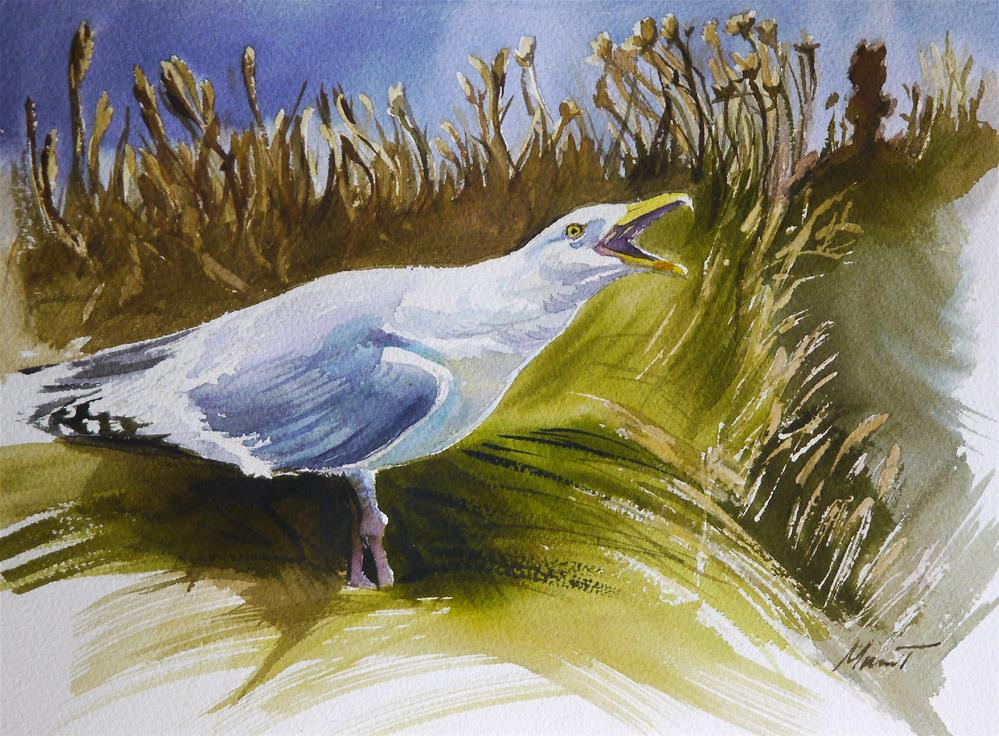 """seagull"" original fine art by Beata Musial-Tomaszewska"