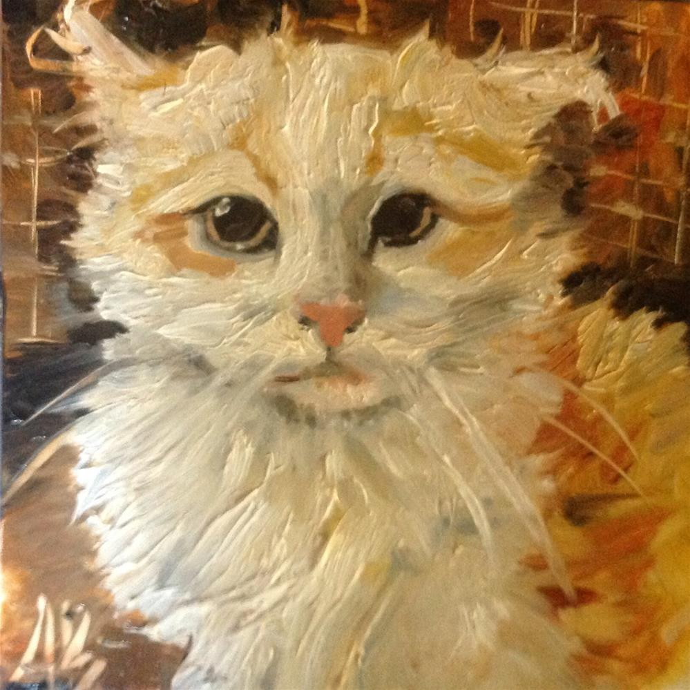 """Caged feral cat"" original fine art by Annette Balesteri"