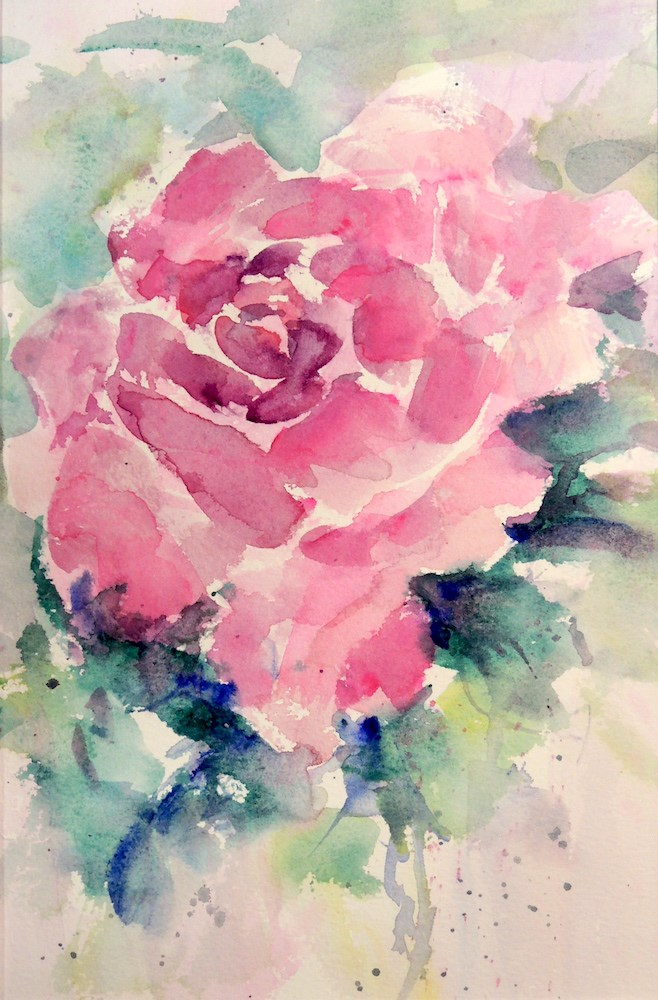 """Magenta Rose"" original fine art by Mary Schiros"