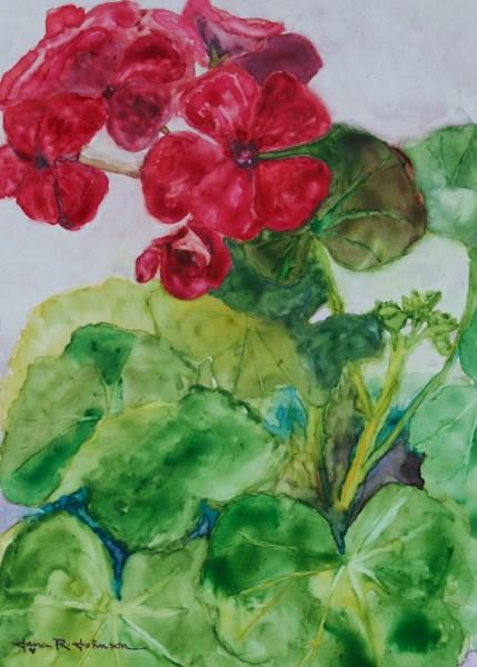 """Sunstar Red"" original fine art by Jana Johnson"