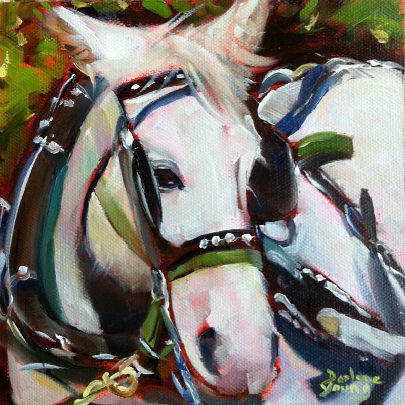 """White Carriage Horse, oil on ray mar, 6x6"" original fine art by Darlene Young"