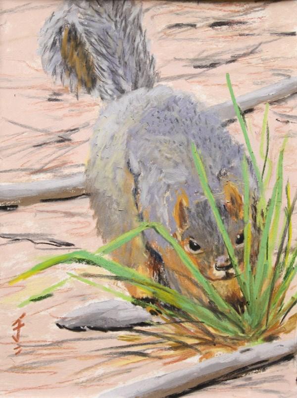 """Curious Squirrel"" original fine art by Jane Frederick"