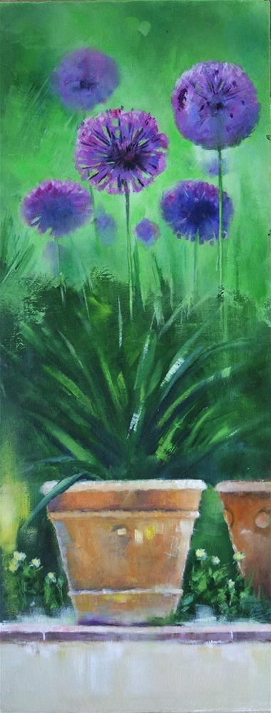 """Allium in terracotta pots"" original fine art by Cathy Holtom"