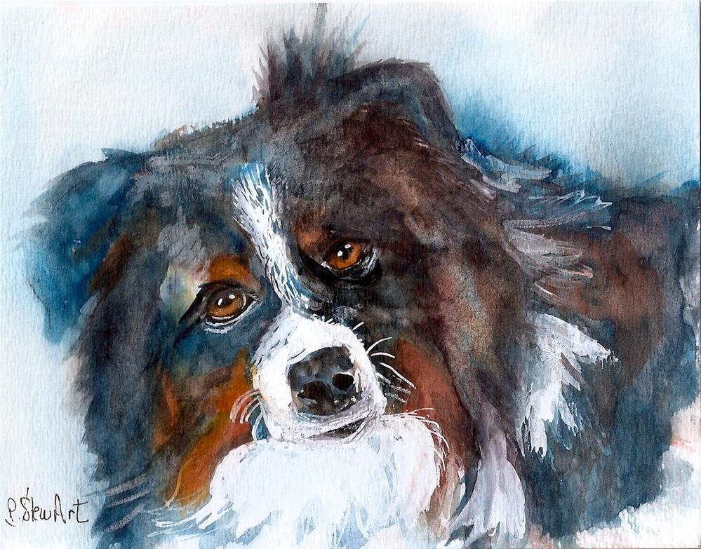 """""""5x7 Mini Australian Shepherd Dog Pet Portrait Watercolor by Penny Lee StewArt"""" original fine art by Penny Lee StewArt"""