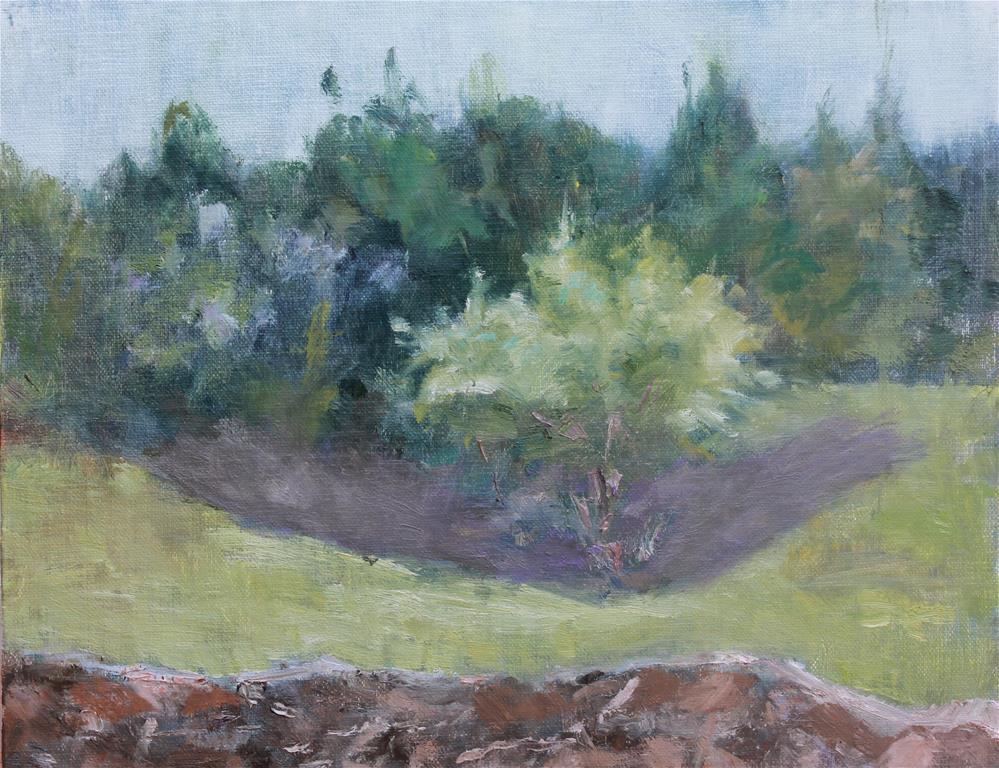 """Grapevine Springs Preserve"" original fine art by Karen Solorzano"