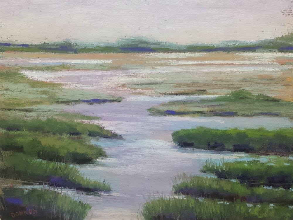 """""""Marsh With A View"""" original fine art by Donna Donnon"""