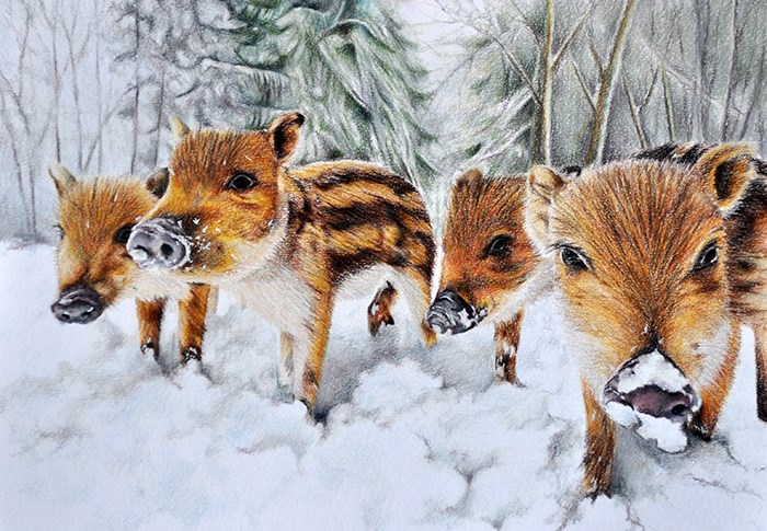 """Wild Piglets"" original fine art by Stefan Peters"