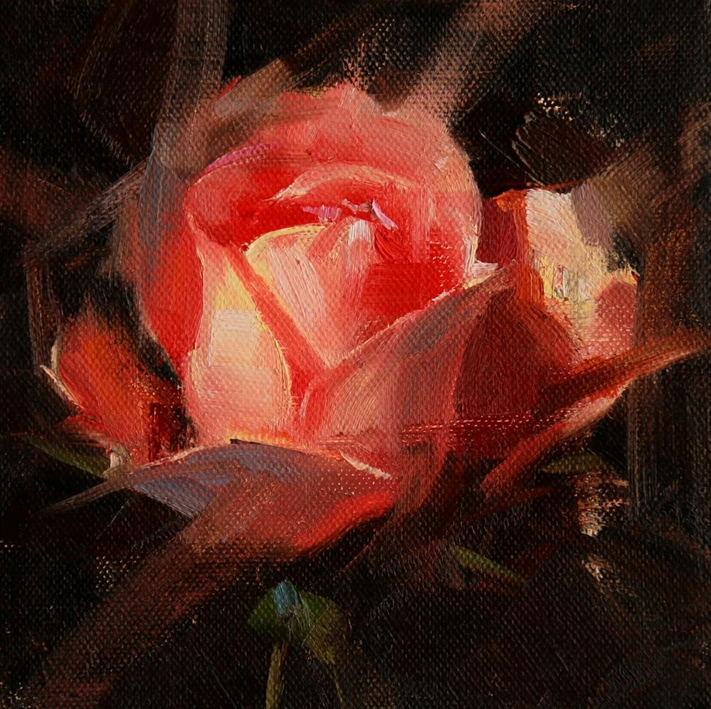 """Rose Study 2017 09"" original fine art by Qiang Huang"