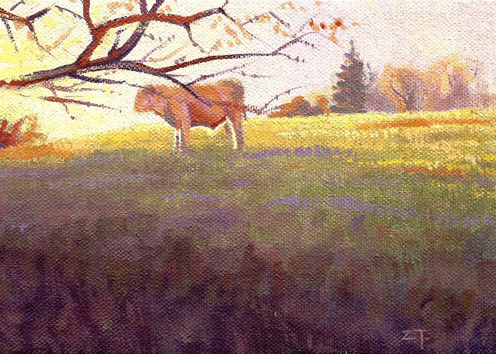 """Pasture Light"" original fine art by Zack Thurmond"