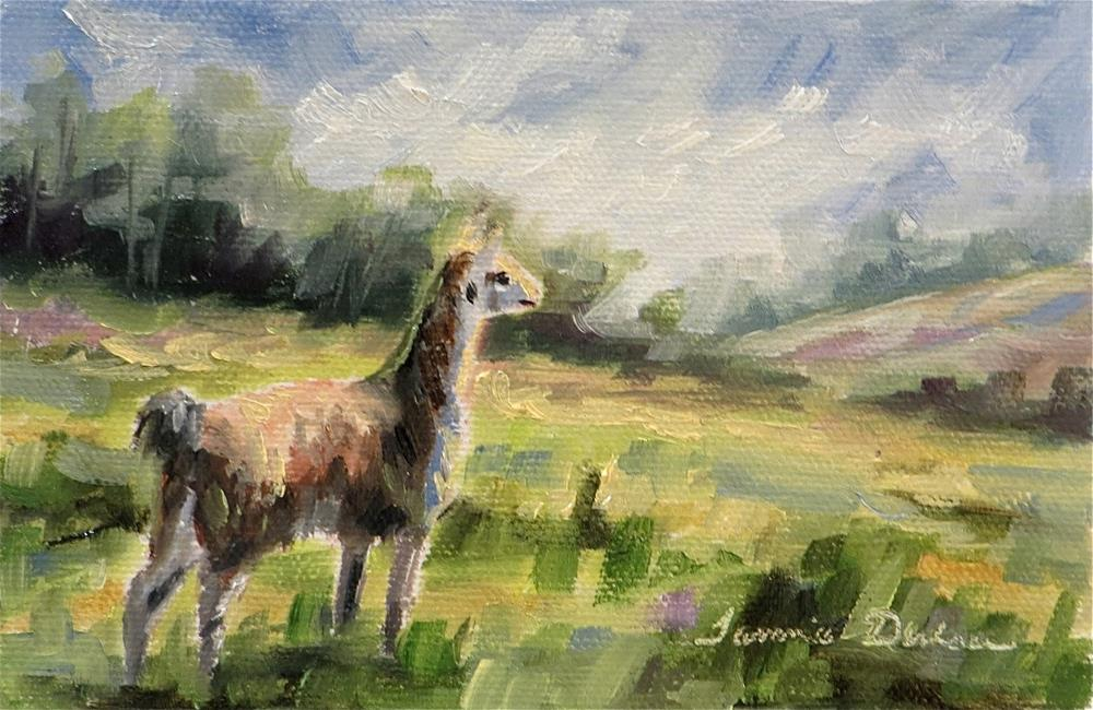"""Llama on Watch"" original fine art by Tammie Dickerson"