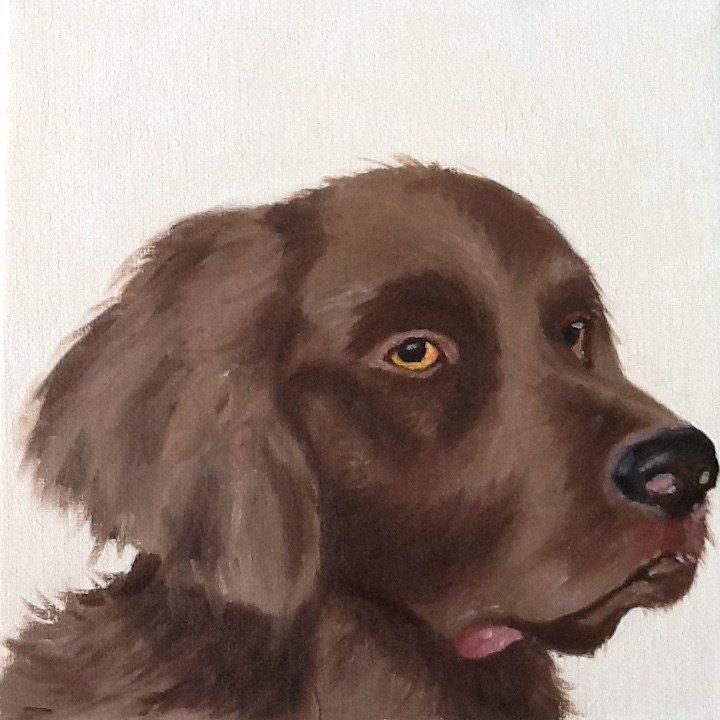 """Brown Labrador"" original fine art by Conny van Leeuwen"