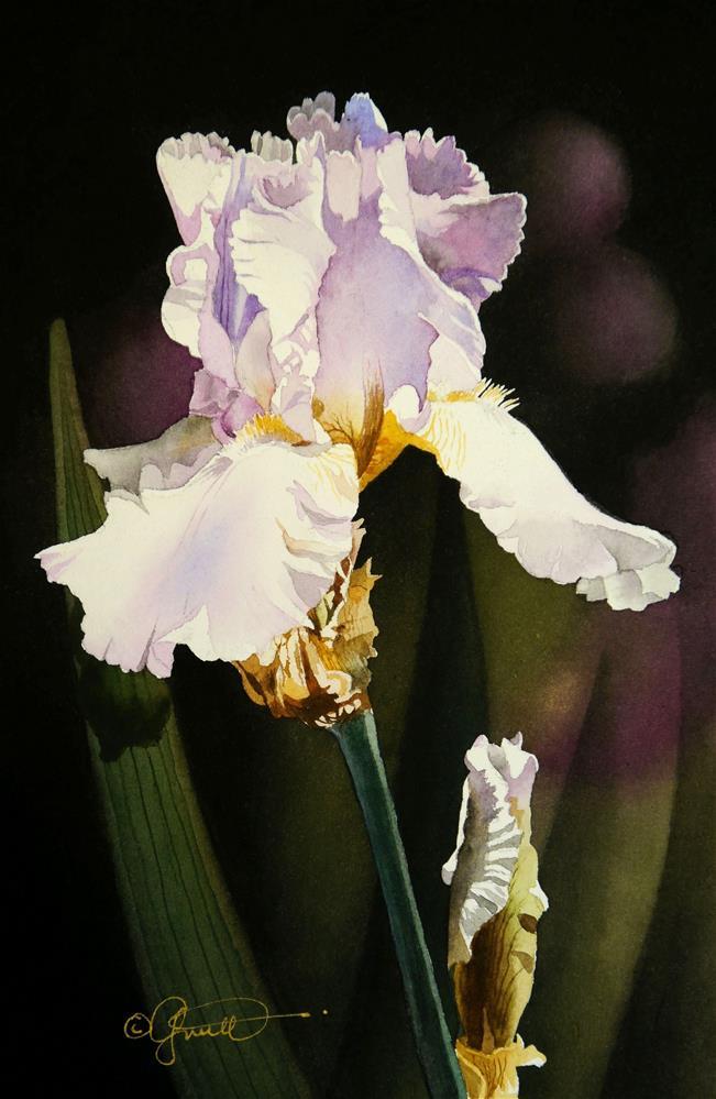 """Soft Lavendar Iris"" original fine art by Jacqueline Gnott, TWSA, WHS"