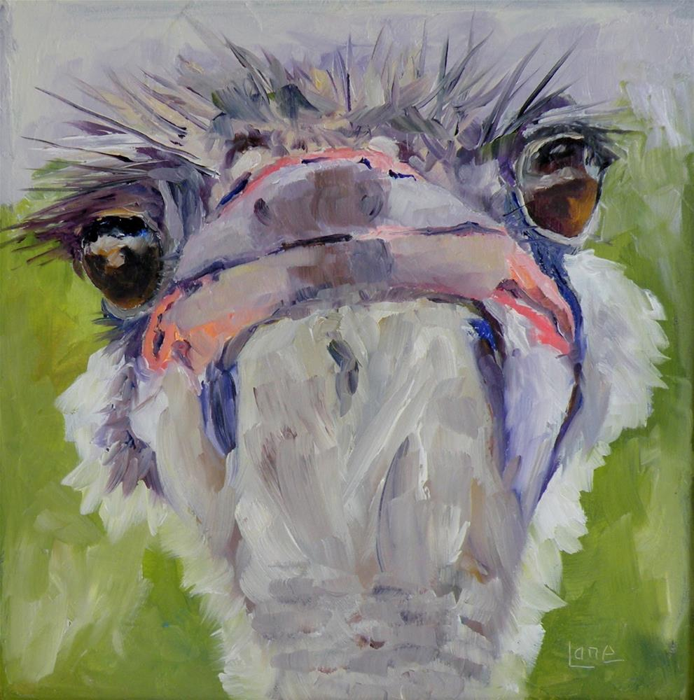 """BELLE, an OSTRICH OIL ON PANEL © SAUNDRA LANE GALLOWAY"" original fine art by Saundra Lane Galloway"