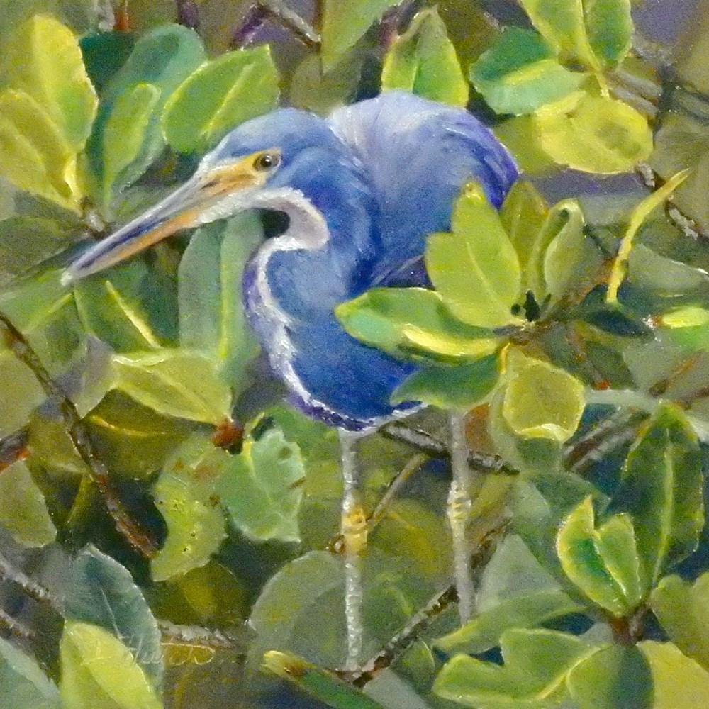"""Little Blue Heron"" original fine art by Diane Hutchinson"