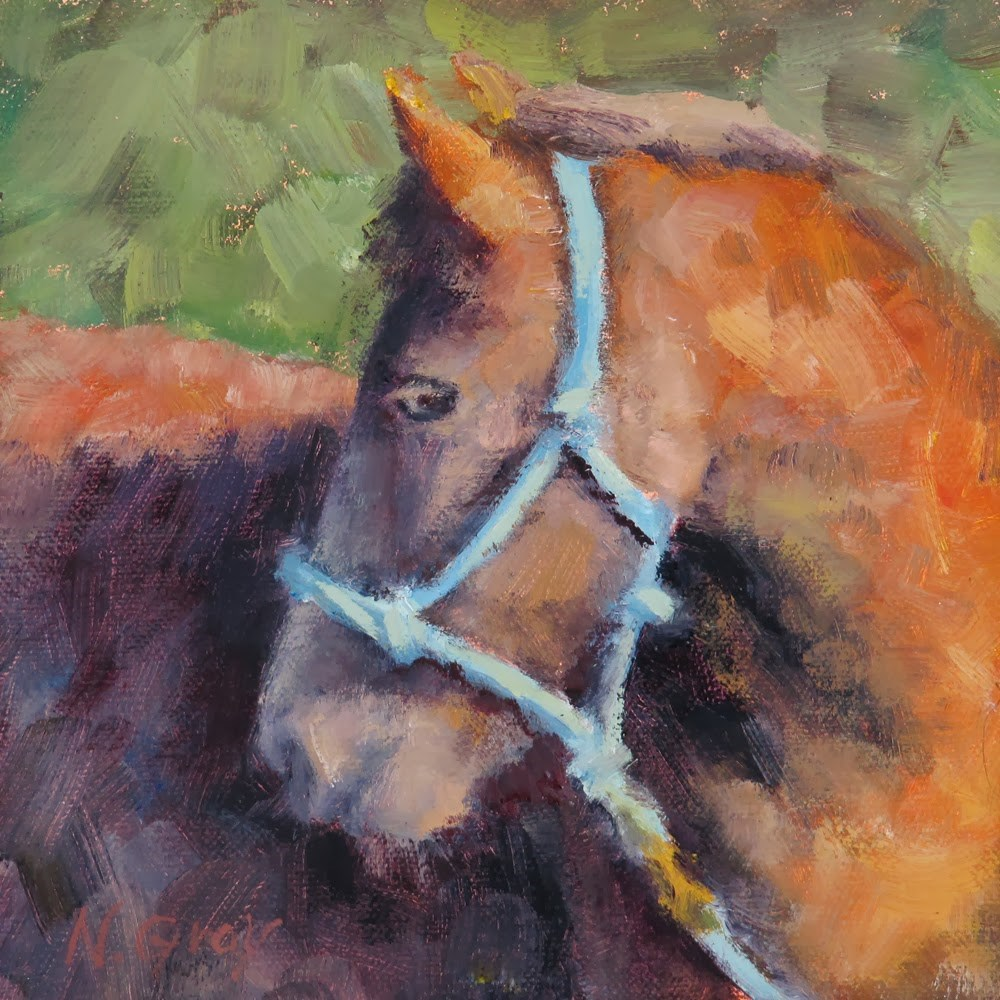 """Horse with Blue Halter"" original fine art by Naomi Gray"