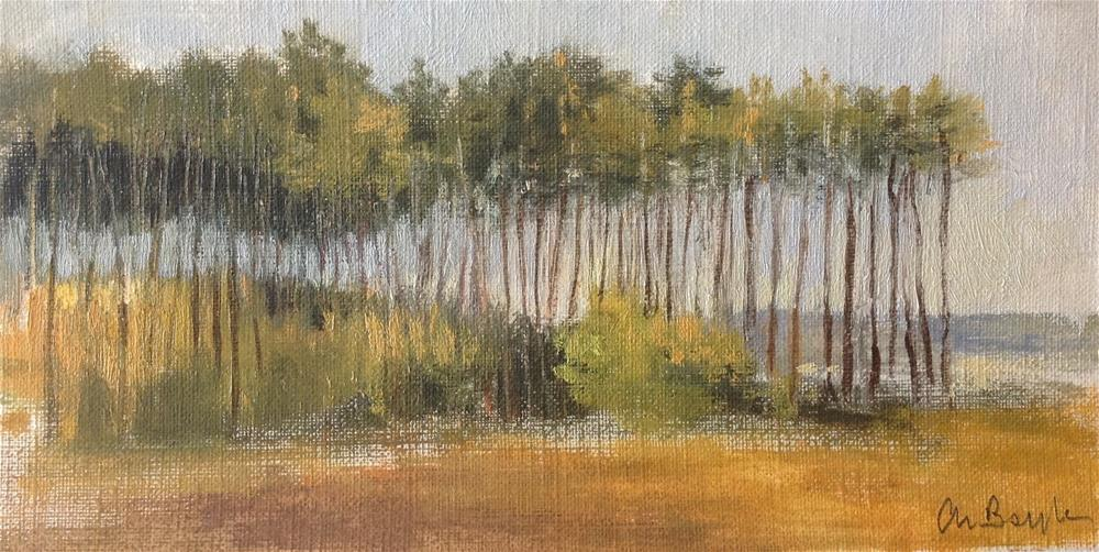 """Pine forest early morning"" original fine art by Christine Bayle"