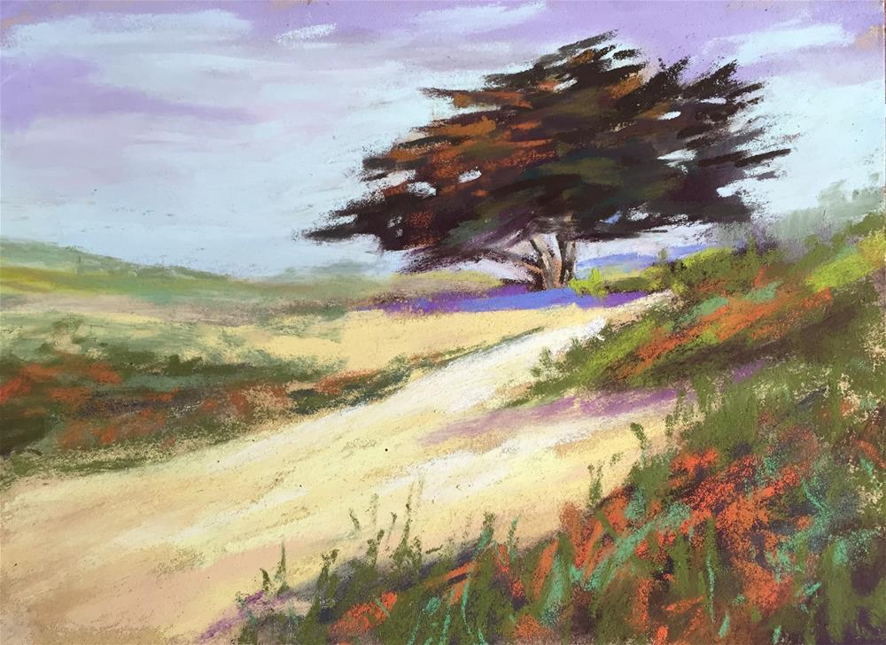 """Lone Cypress"" original fine art by Sherri Cassell"