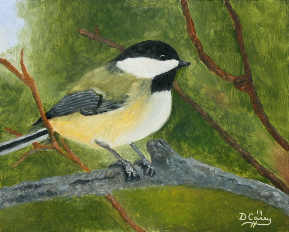 """Avian Series - Chickadee 001a 8x10 oil on wood panel - Dave Casey - TheDailyPainter"" original fine art by Dave Casey"