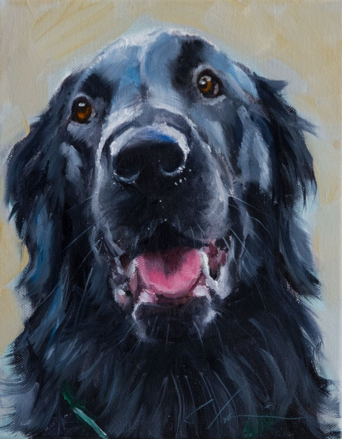 """PAINT MY DOG - Rico"" original fine art by Clair Hartmann"