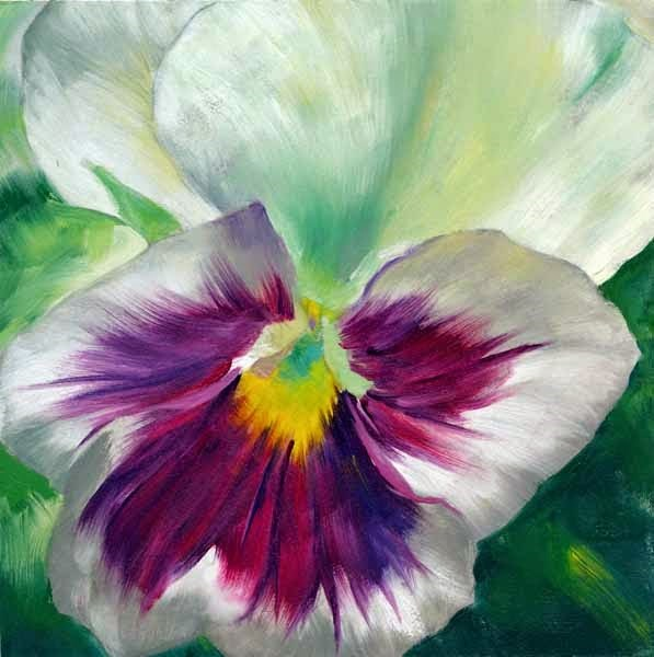 """Showy"" original fine art by Brenda Ferguson"