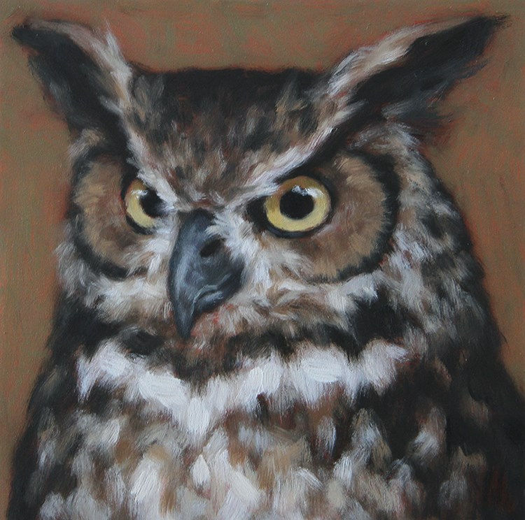 """Great Horned Owl"" original fine art by Sarah Becktel"