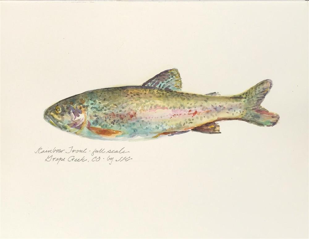 """""""Rainbow Trout"""" original fine art by Jean Krueger"""