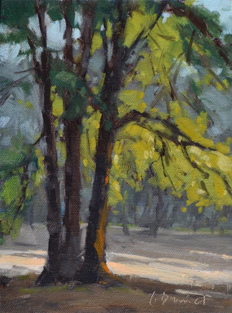 """Tree Veil"" original fine art by Laurel Daniel"