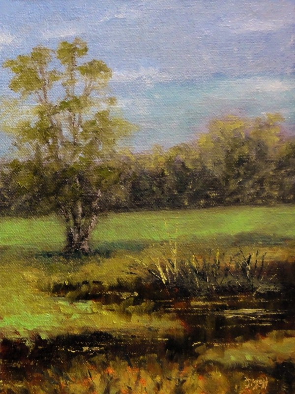 """Southern Oak At The Edge Of The Marsh"" original fine art by Dalan Wells"