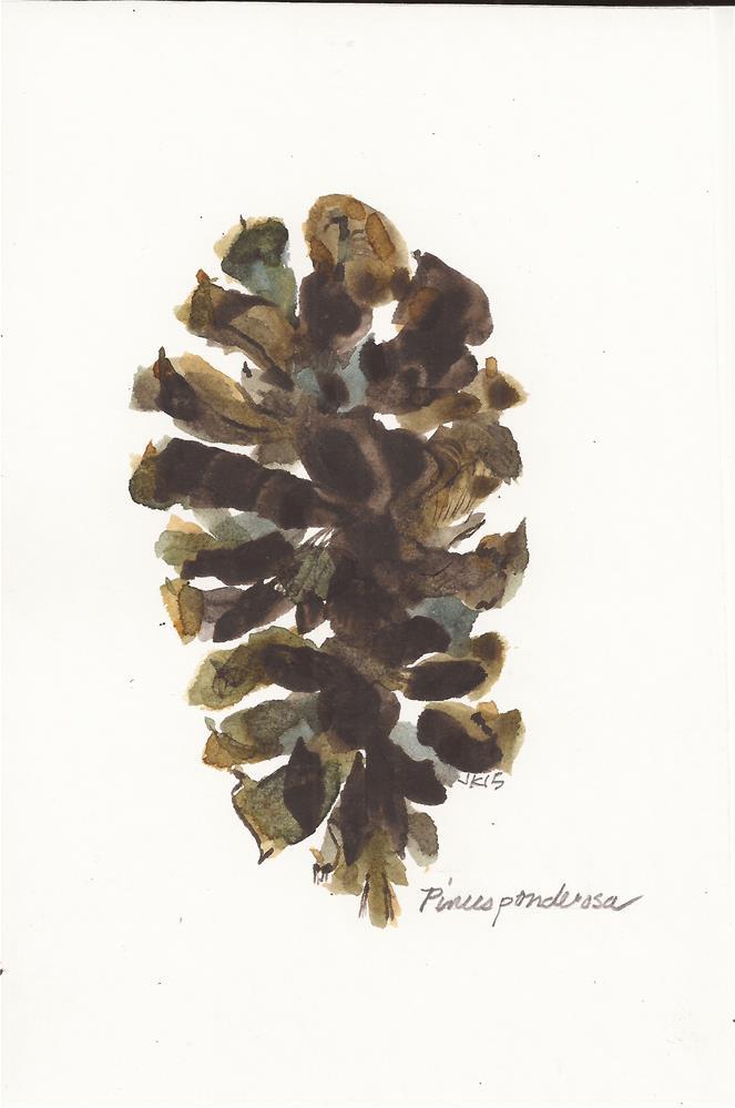"""Cone - Pinus ponderosa"" original fine art by Jean Krueger"