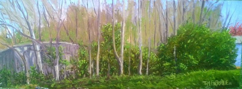 """Spring's Beauty"" original fine art by timothy eversole"