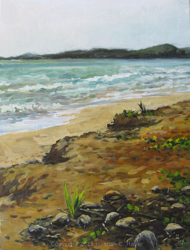 """Coconuts on the Sand"" original fine art by Hannah C. Heyer"