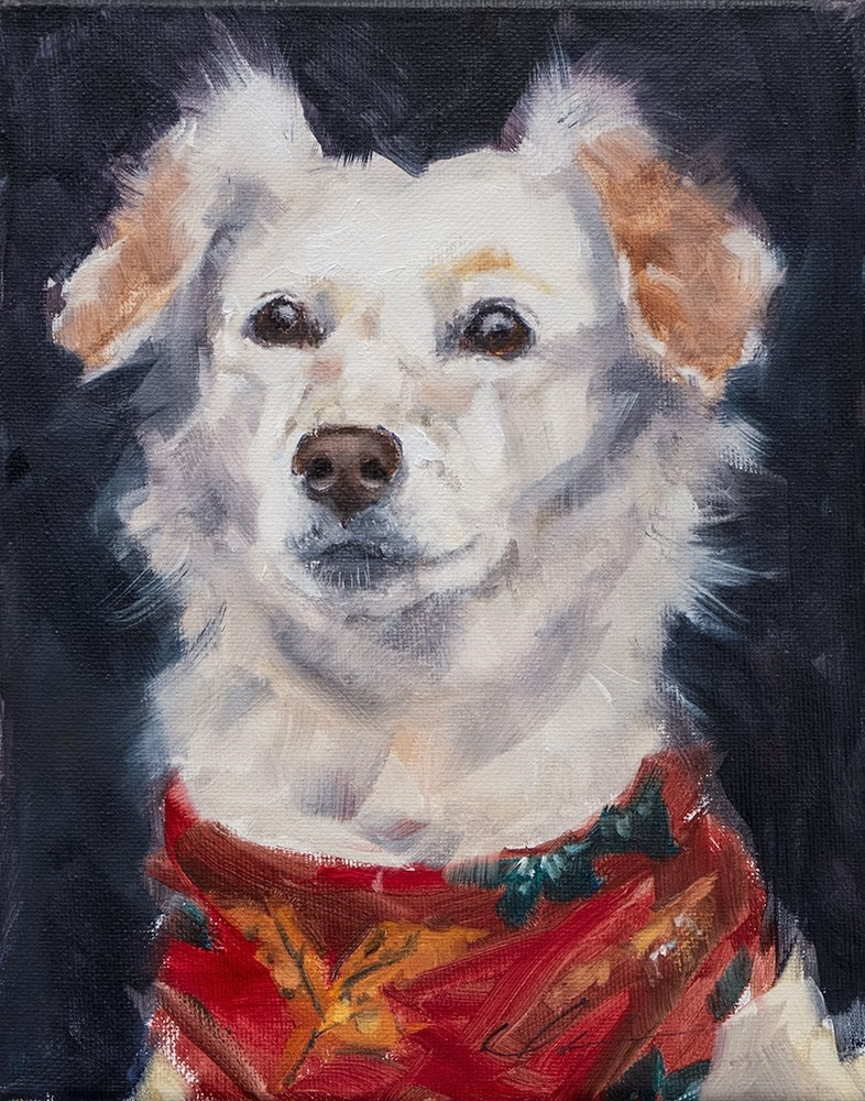 """Daisy"" original fine art by Clair Hartmann"