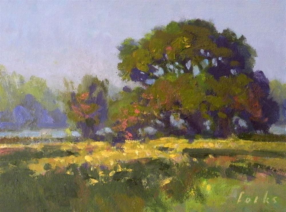 """A Field with Yellow Flowers"" original fine art by David Forks"